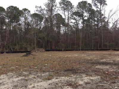 Residential Lots & Land For Sale: 1006 Theodore Road