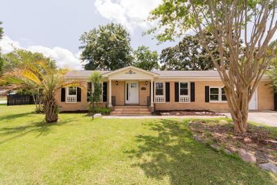 Goose Creek Single Family Home For Sale: 119 Camelot Drive