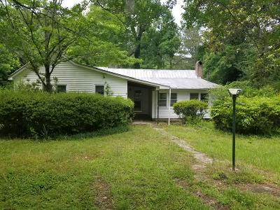Summerville Single Family Home For Sale: 253 Semester Lane