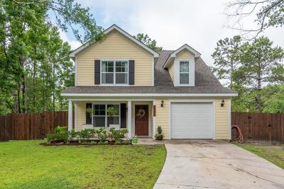 Johns Island Single Family Home For Sale: 1506 Southwick Drive