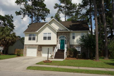 Summerville Single Family Home For Sale: 1096 Cobblestone Boulevard