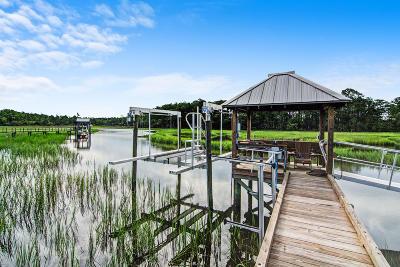 Charleston Residential Lots & Land For Sale: 551 Little Barley Lane