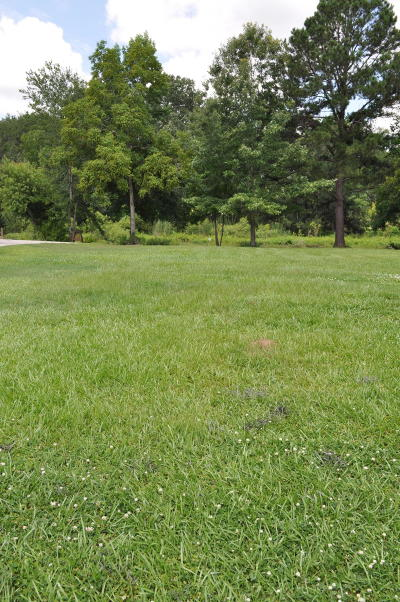 Charleston County Residential Lots & Land For Sale: #8 Jacobs Point Boulevard