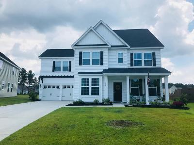 Summerville Single Family Home For Sale: 127 Radtko Road