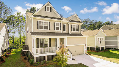 Mount Pleasant Single Family Home For Sale: 1481 Fort Palmetto Circle