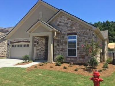 Berkeley County, Charleston County, Colleton County, Dorchester County Single Family Home For Sale: 301 Blakely Village Lane