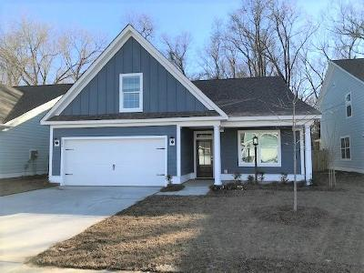 Berkeley County, Charleston County, Colleton County, Dorchester County Single Family Home For Sale: 146 Longdale Drive
