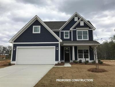 Berkeley County, Charleston County, Colleton County, Dorchester County Single Family Home For Sale: 120 Longdale Drive