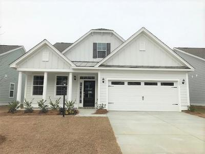 Berkeley County, Charleston County, Colleton County, Dorchester County Single Family Home For Sale: 135 Longdale Drive