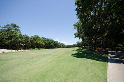 Johns Island Residential Lots & Land For Sale: 2642 High Hammock Road