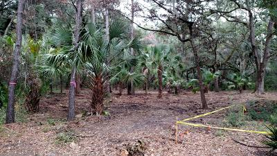 Seabrook Island Residential Lots & Land For Sale: 2820 Dove Nest Court