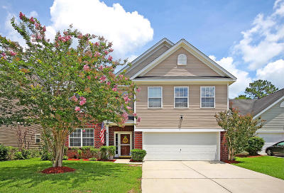 Summerville Single Family Home For Sale: 2004 Asher Loop