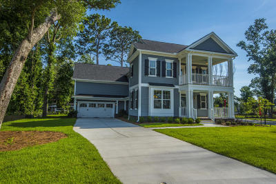 Charleston Single Family Home For Sale: 990 Foliage Lane