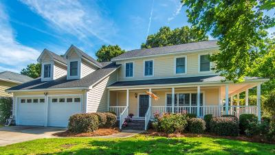 Mount Pleasant Single Family Home For Sale: 1329 Hidden Lakes Drive