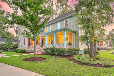 Mount Pleasant Single Family Home For Sale: 3704 Oconee Loop