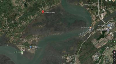 Johns Island Residential Lots & Land For Sale: 2835 Roseville Road
