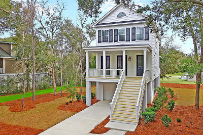 Charleston Single Family Home For Sale: 2252 Brown Pelican Lane