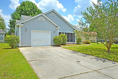 Goose Creek Single Family Home For Sale: 248 Hastings Drive