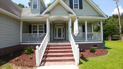 Goose Creek Single Family Home For Sale: 100 Archibald Drive