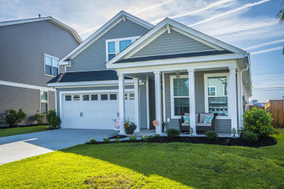 Summerville Single Family Home For Sale: 229 Palmetto Walk Drive