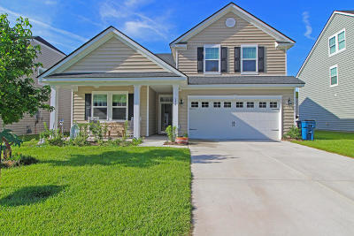 Moncks Corner Single Family Home For Sale: 179 Blackwater Way