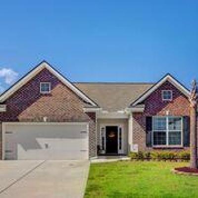 North Charleston Single Family Home For Sale: 7704 Kinston Street