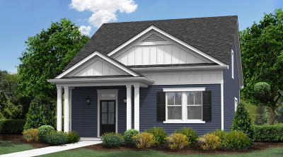 North Charleston Single Family Home For Sale: 3937 Four Poles Park Drive