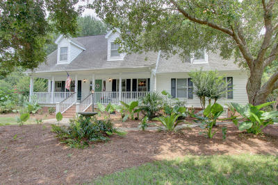 Mount Pleasant Single Family Home For Sale: 252 Beech Hill Lane