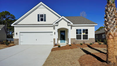 Summerville Single Family Home For Sale: 137 Greenwich Drive