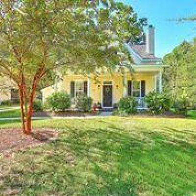 Mount Pleasant Single Family Home For Sale: 1301 Carol Oaks Drive