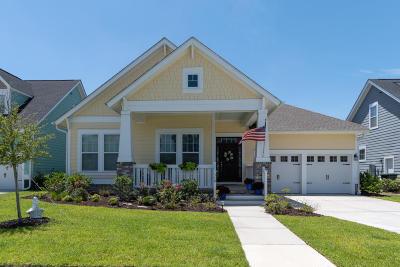 Summerville Single Family Home For Sale: 319 Ashby Street