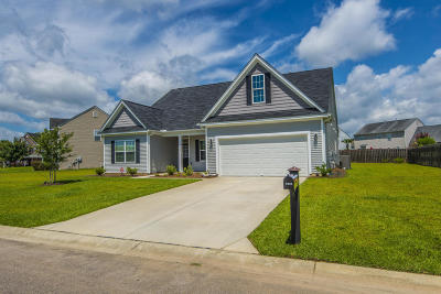 Summerville Single Family Home For Sale: 9002 Chato Court