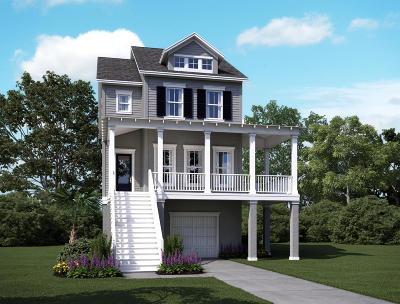 Charleston Single Family Home For Sale: 2166 Brown Pelican Lane