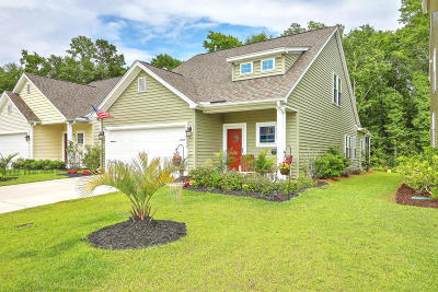 Single Family Home For Sale: 1537 Oldenburg Drive