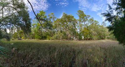 Seabrook Island Residential Lots & Land For Sale: 2445 Bateau Trace