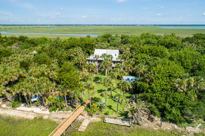 Isle Of Palms Single Family Home For Sale: 2407 Captain John Hutt Road