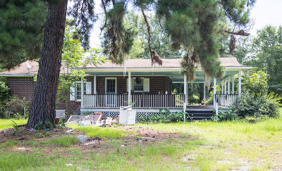 Walterboro Single Family Home For Sale: 2927 Cottageville Highway