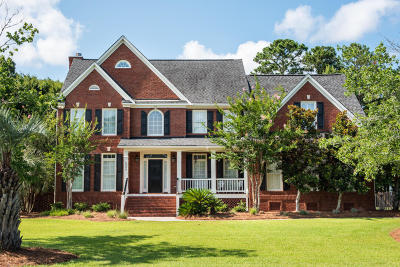 Mount Pleasant Single Family Home For Sale: 3384 Shagbark Circle