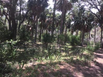 Edisto Beach SC Residential Lots & Land For Sale: $145,000