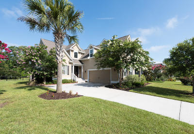 Single Family Home For Sale: 523 Rainsong Drive