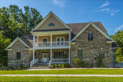 Summerville Single Family Home For Sale: 1068 Blockade Runner Parkway