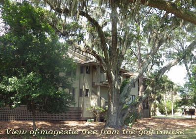 Edisto Island SC Attached For Sale: $198,200