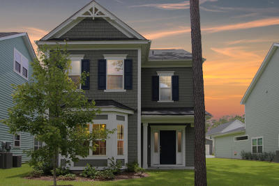 Charleston County Single Family Home For Sale: 2414 Lilytree Drive