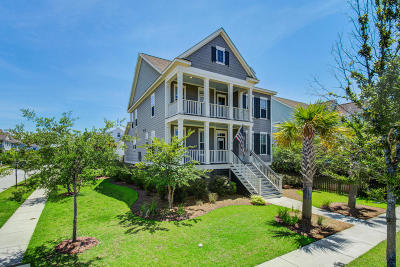Daniel Island Single Family Home For Sale: 1483 Wando Landing Street
