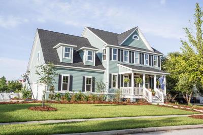 Mount Pleasant Single Family Home For Sale: 2629 Alderly Lane