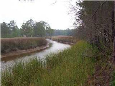 Awendaw Residential Lots & Land For Sale: 7055 Durgin Place