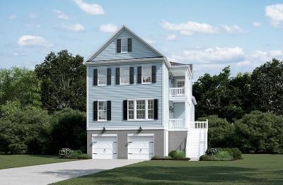 Charleston Single Family Home For Sale: 4 Amalie Farms Drive