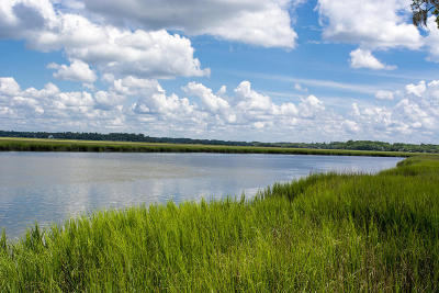Edisto Island SC Residential Lots & Land For Sale: $760,000