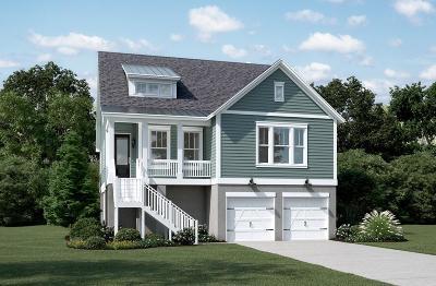 Charleston Single Family Home For Sale: 3 Amalie Farms Drive
