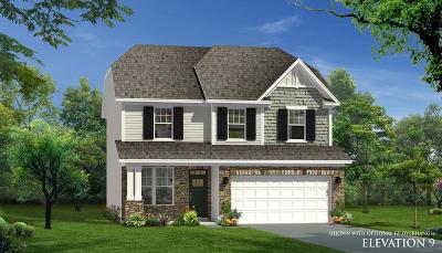 Single Family Home For Sale: 100 Elliott Creek Lane